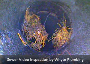 Sewer Video Inspection San Fernando Valley